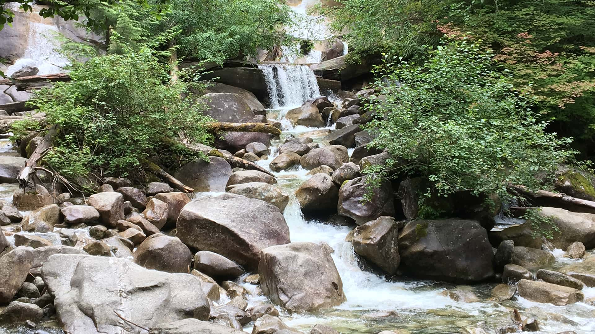 11BeWild Adventures Waterfalls and Whistler