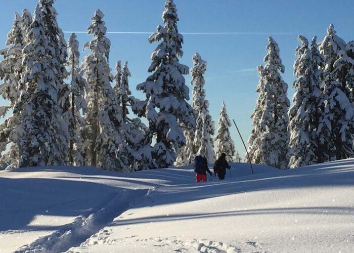 Elfin winter hike