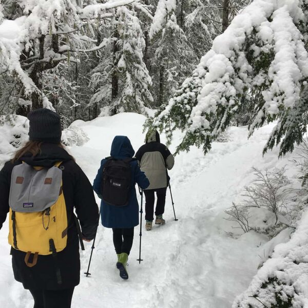 Whistler Snowshoe & Fondue Tour