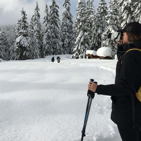 11BeWild Adventures Waterfalls and Whistler Winter