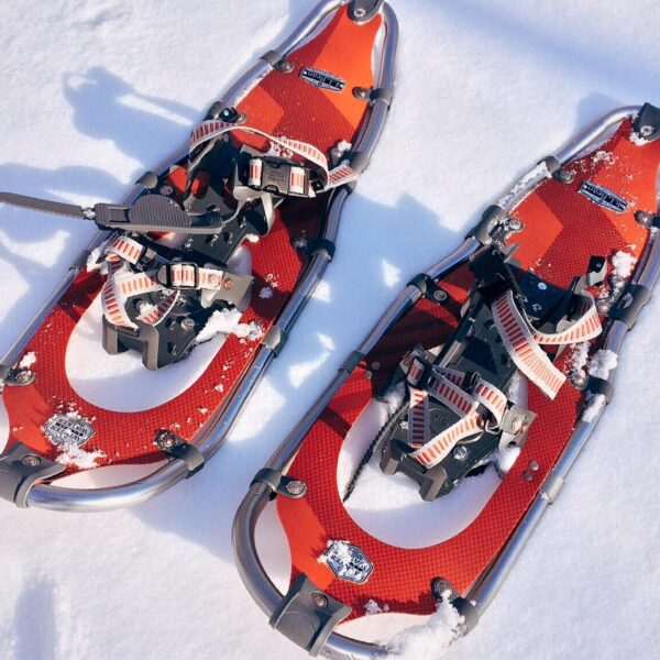 Bright snowshoes resting on snow