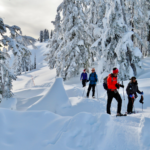 Snowshoeing near Vancouver