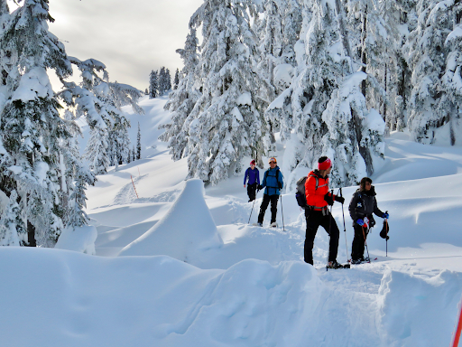 11Snowshoeing near Vancouver
