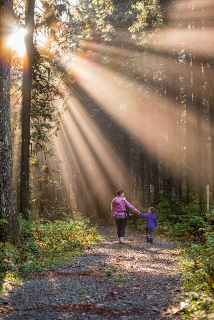 Sunlight streams through a woodland as a woman and young girl walk along the path away from the camera